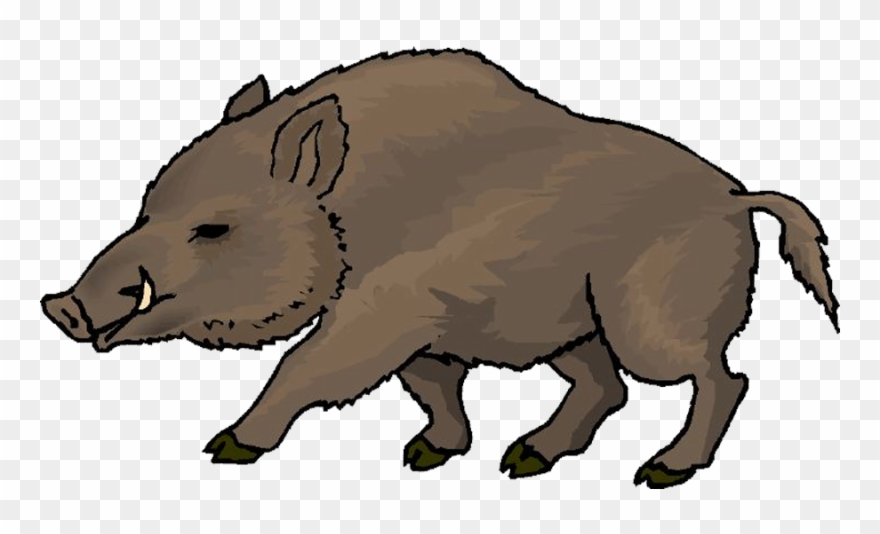 Clipart wild boar picture black and white library Png Freeuse Wild Clip Art Others - Boar Clipart Transparent Png ... picture black and white library