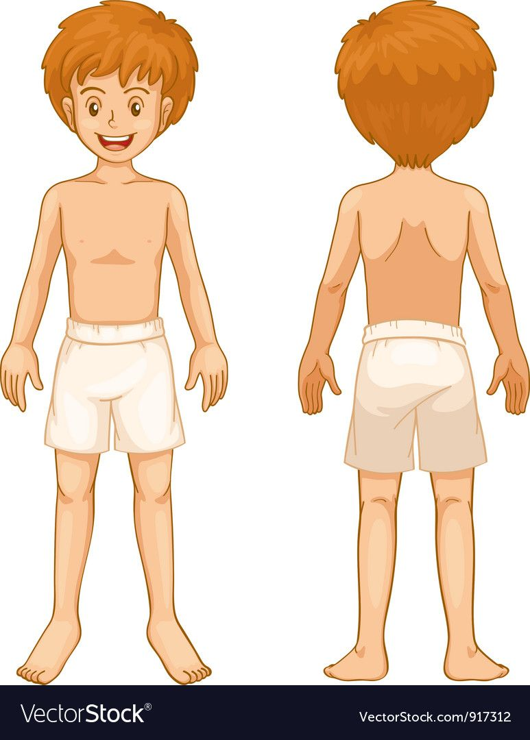 Free clipart body parts graphic royalty free stock Pin by Hung Ling on 人 | Body parts, Body parts for kids, Clip art graphic royalty free stock