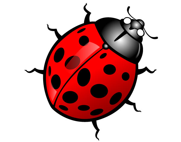 Cliparts insect png Free Free Bug Clipart, Download Free Clip Art, Free Clip Art on ... png
