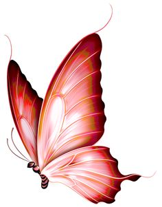 Clipart burgandy butterfly transparent graphic black and white download Butterflies clipart burgundy, Butterflies burgundy Transparent FREE ... graphic black and white download