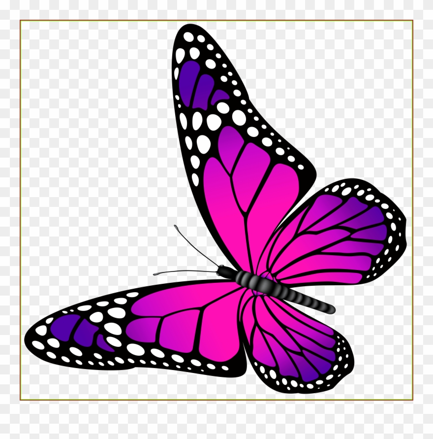 Clipart burgandy butterfly transparent clip art black and white download Amazing Orange Butterfly Png Clip Art Image Ⓒ Transparent Png ... clip art black and white download
