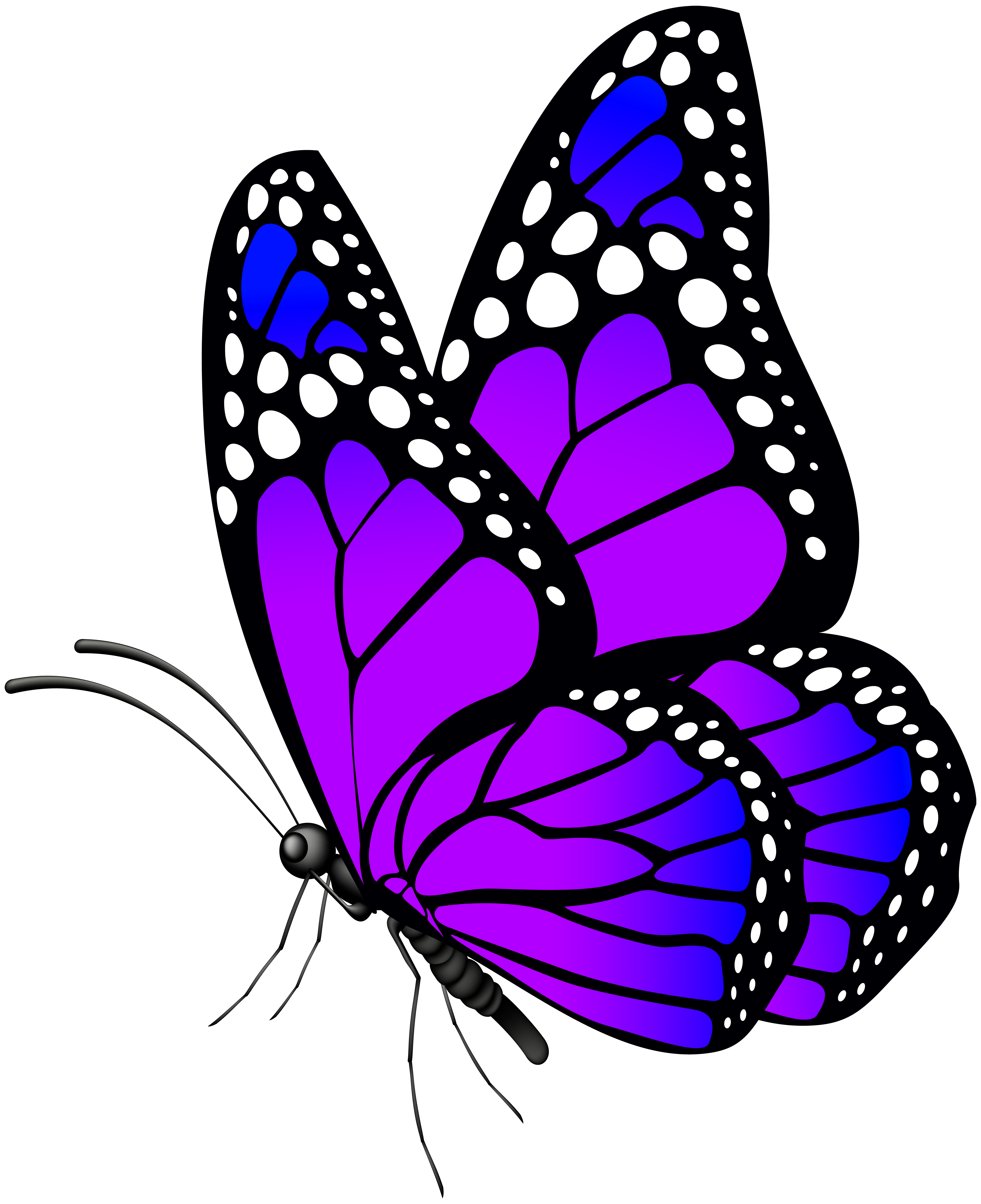 Clipart butterfly svg freeuse download Butterfly Purple PNG Clip Art Image | Gallery Yopriceville - High ... svg freeuse download