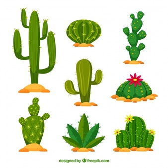 Clipart cactus free banner transparent library Cactus Vectors, Photos and PSD files | Free Download banner transparent library