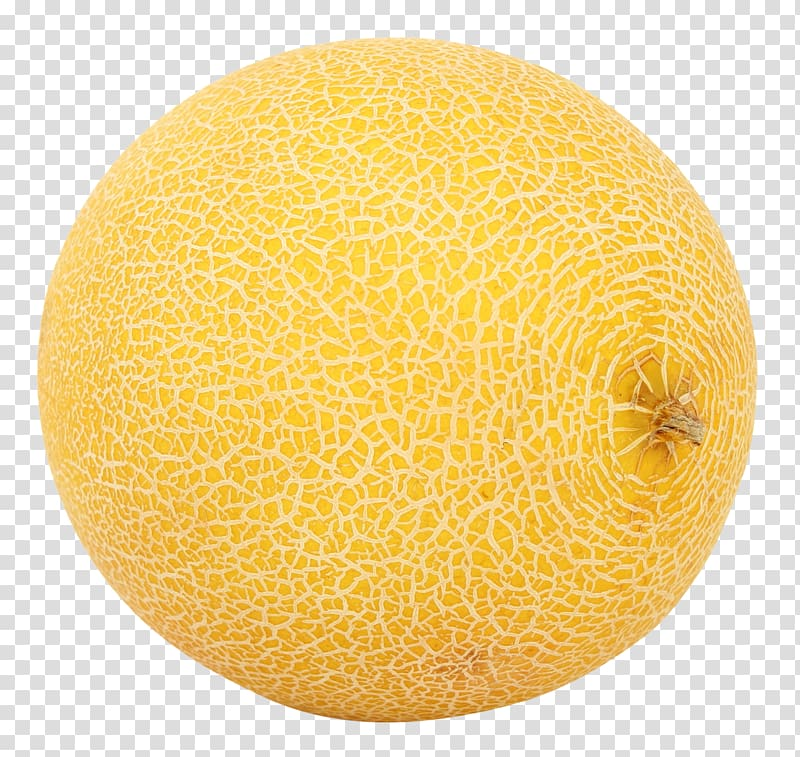 Clipart cantaloupe vector free download Cantaloupe Galia melon Honeydew, melon transparent background PNG ... vector free download