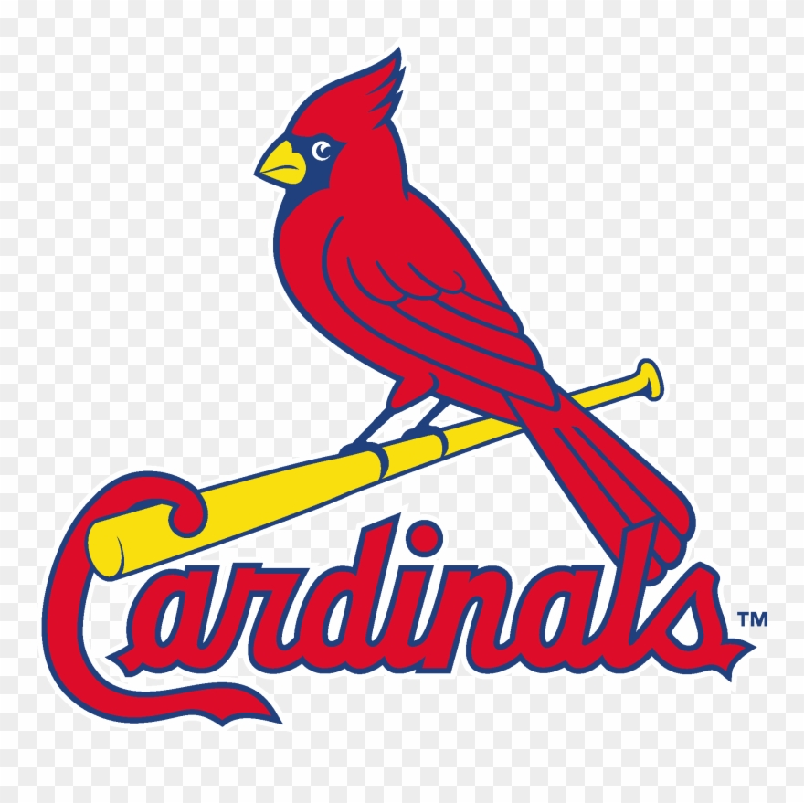 Clipart cardinals graphic library library Louis Cardinals Logo Vector - Stl Cardinals Clipart (#481163 ... graphic library library