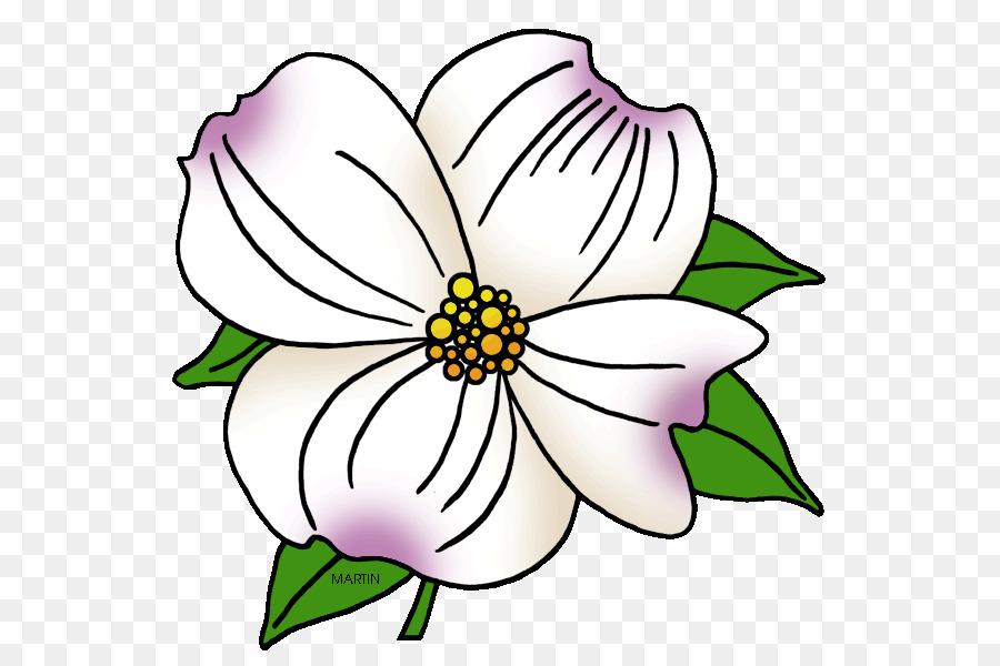 Clipart carolinas clip free Dogwood Flower PNG Flowering Dogwood North Carolina Clipart download ... clip free