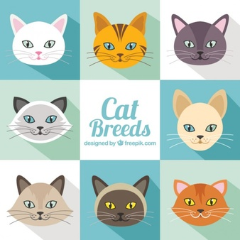 Clipart cat is sorry banner royalty free stock Cat Vectors, Photos and PSD files | Free Download banner royalty free stock