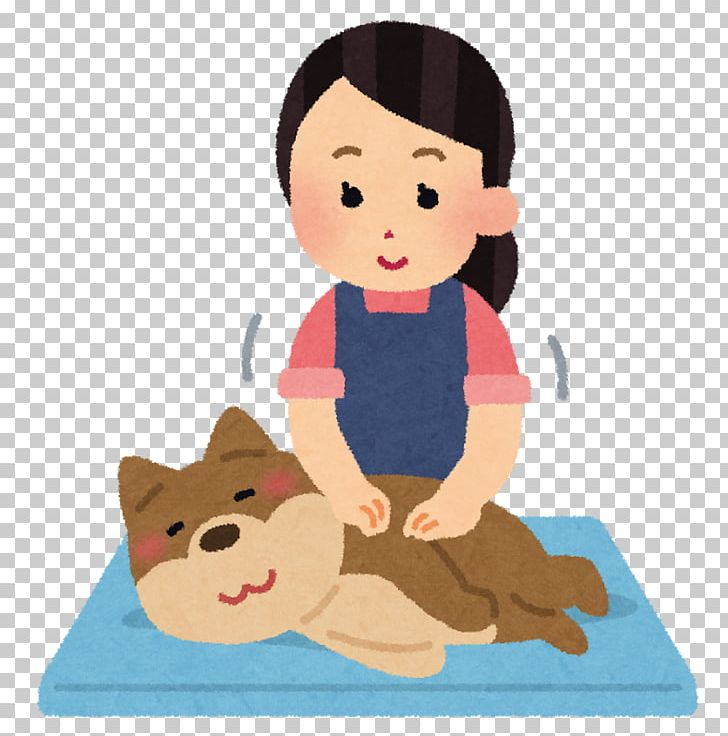 Clipart child with ferret jpg freeuse Cat Puppy Pet Ferret Shih Tzu PNG, Clipart, Animals, Aromatherapy ... jpg freeuse
