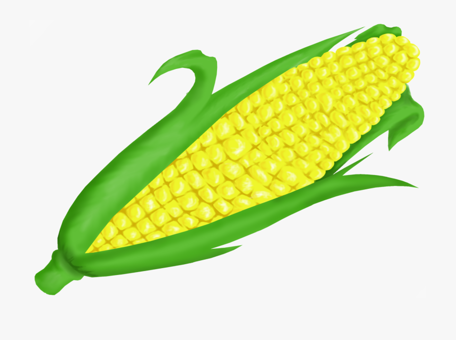 Clipart of corn clip art freeuse Corn Clipart - Clip Art Corn #69506 - Free Cliparts on ClipartWiki clip art freeuse
