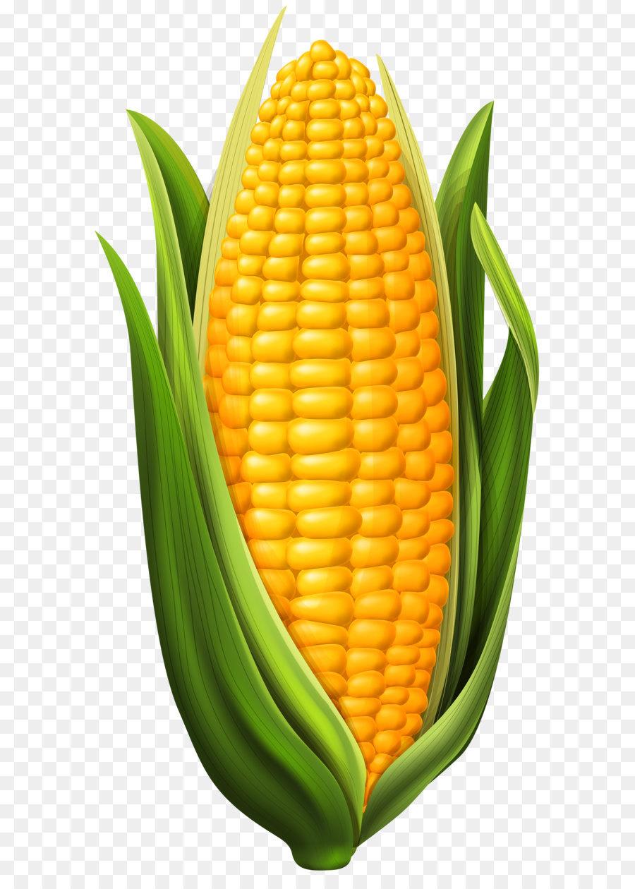 Clipart cob banner free stock Corn cob clipart 3 » Clipart Station banner free stock