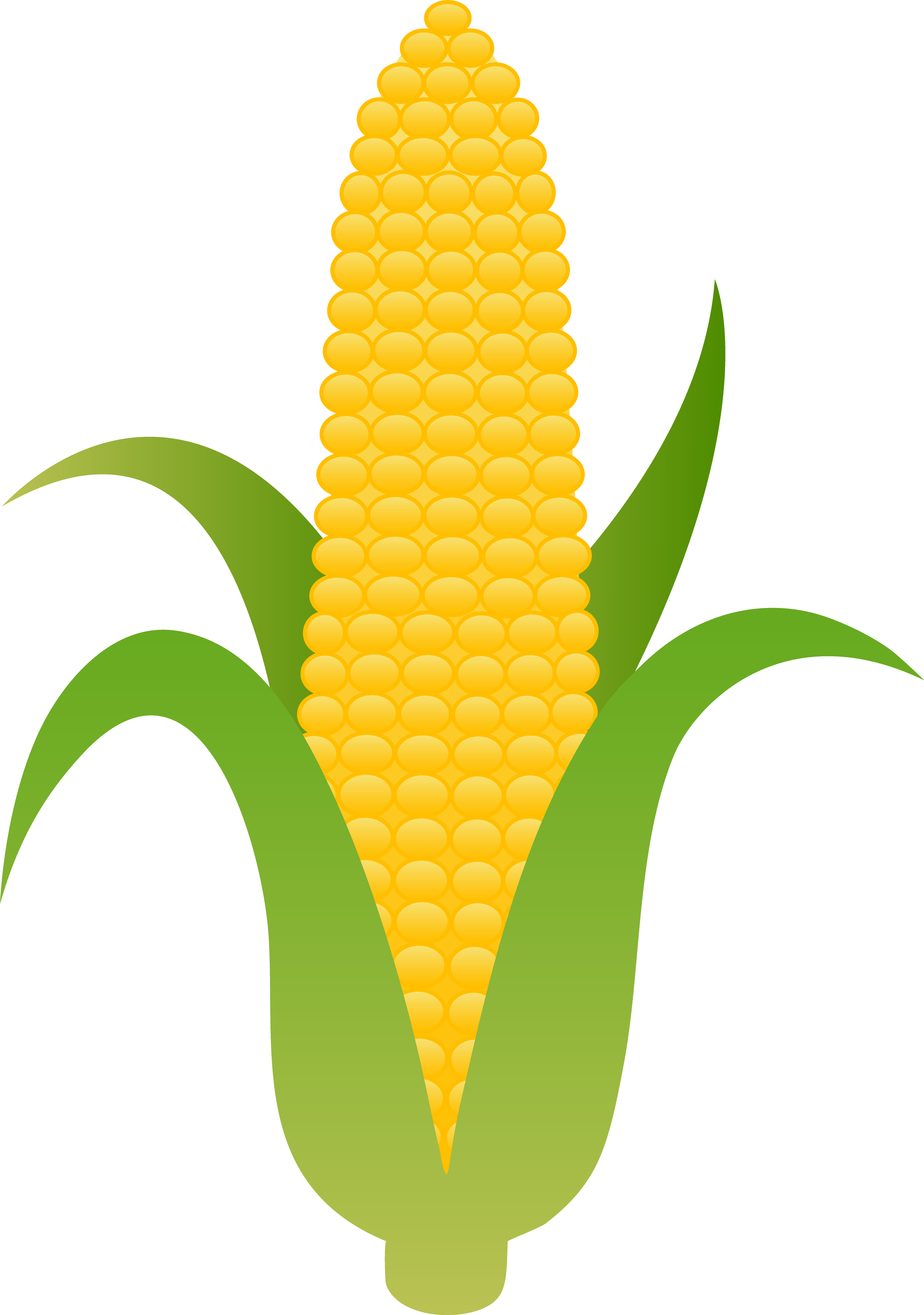 Indian corn clipart jpg royalty free 92+ Corn On The Cob Clip Art | ClipartLook jpg royalty free