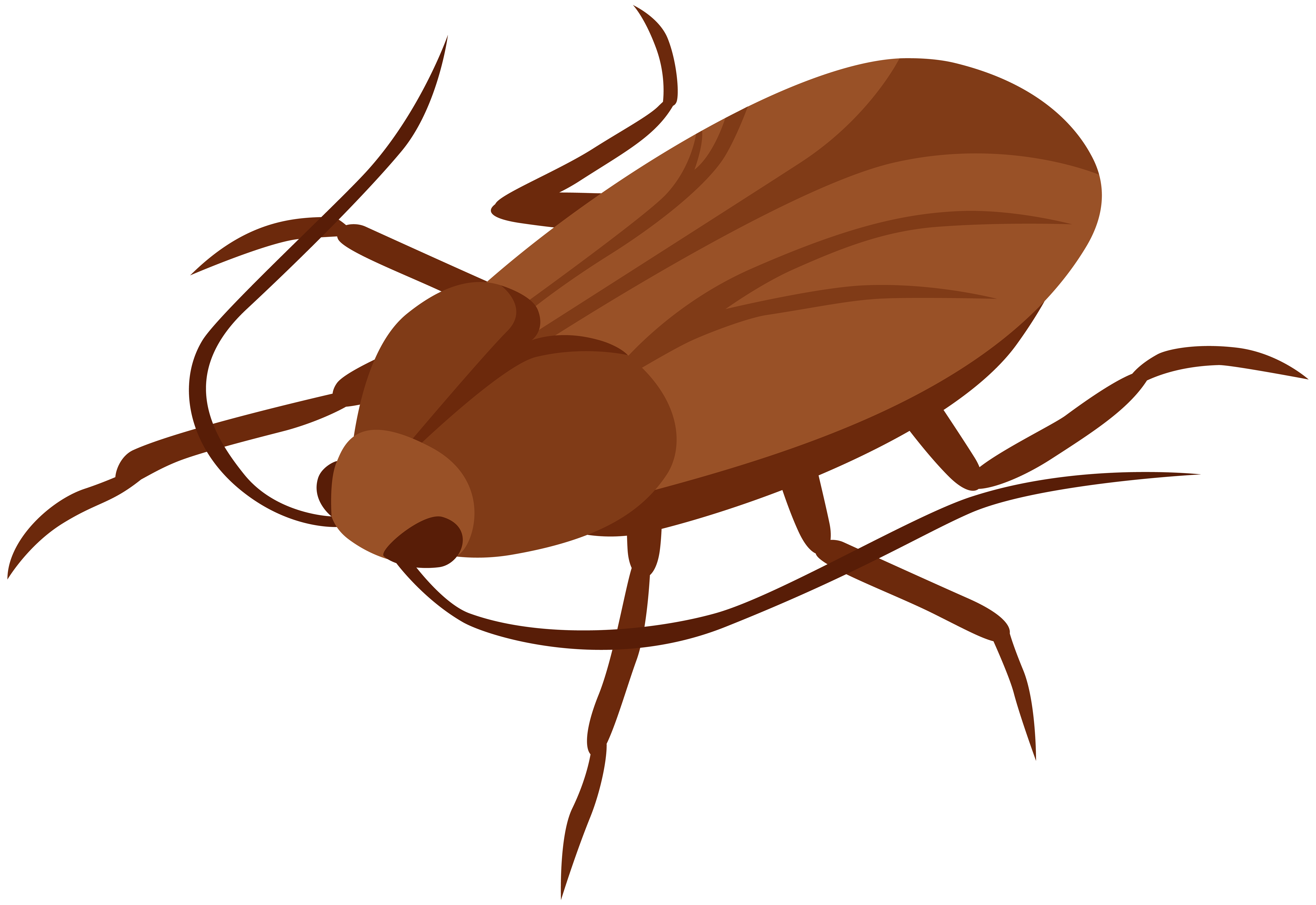 Cockroach images clipart vector free library Cockroach PNG Clip Art - Best WEB Clipart vector free library