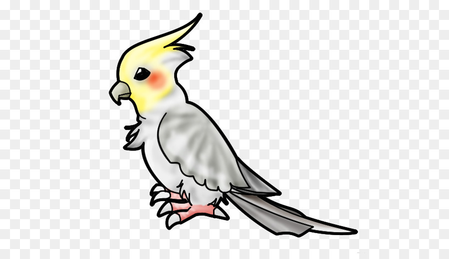Clipart cockatiel royalty free library Bird Line Drawing png download - 625*510 - Free Transparent ... royalty free library