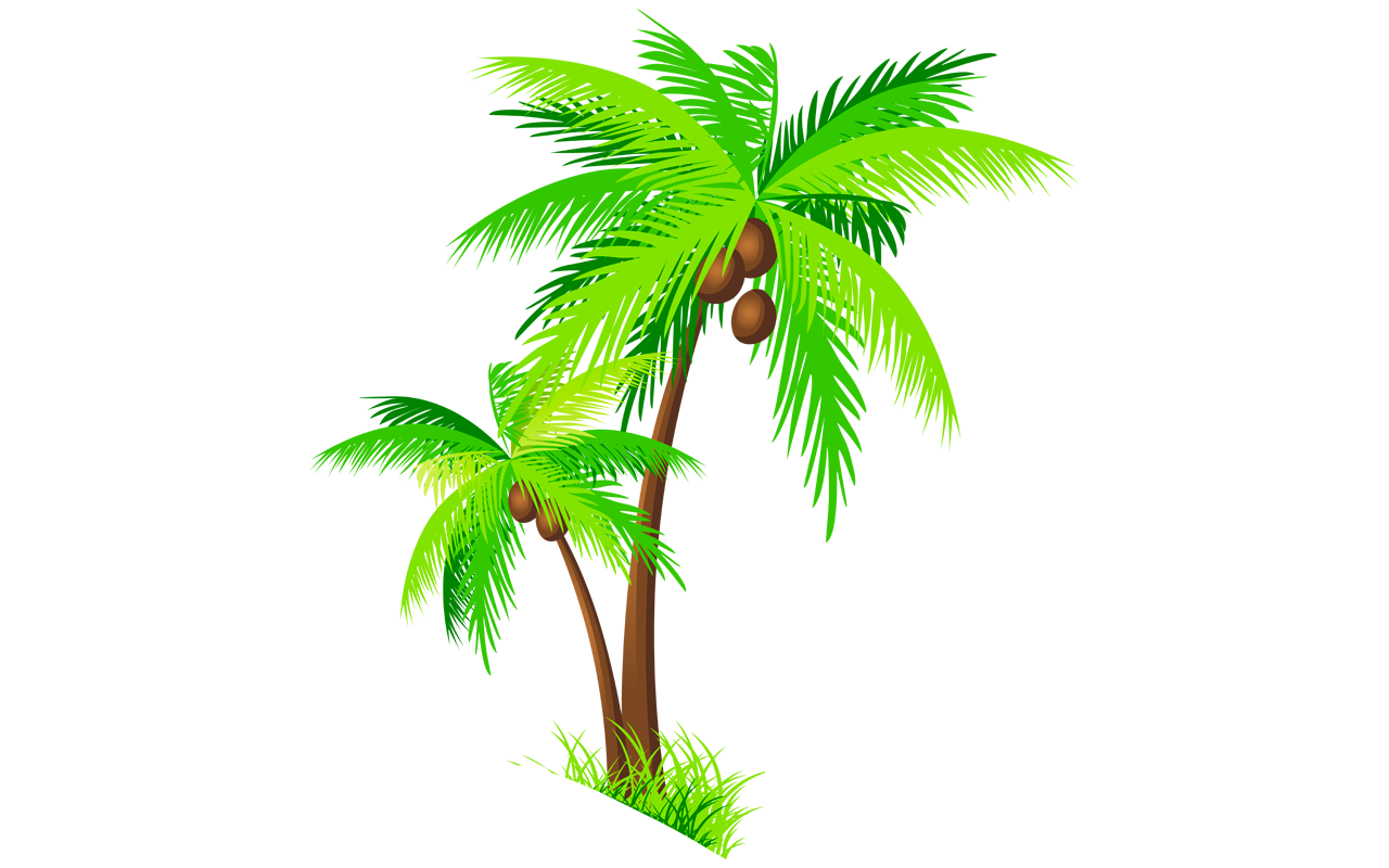 Coconut palm tree clipart vector royalty free download Coconut Tree Pictures Drawing at GetDrawings.com | Free for personal ... vector royalty free download