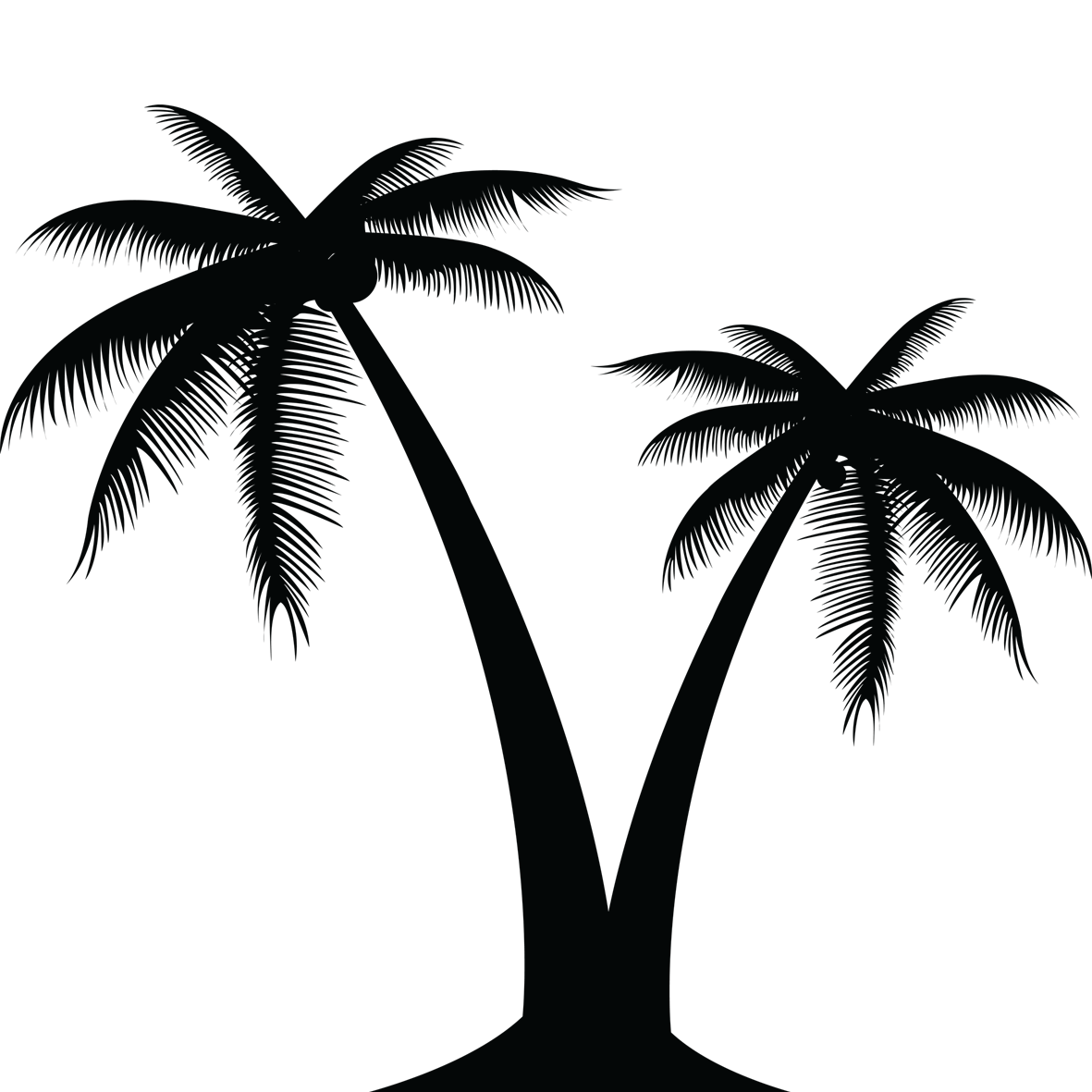 Coconut tree clipart black and white svg freeuse stock Coconut Tree Silhouette at GetDrawings.com | Free for personal use ... svg freeuse stock