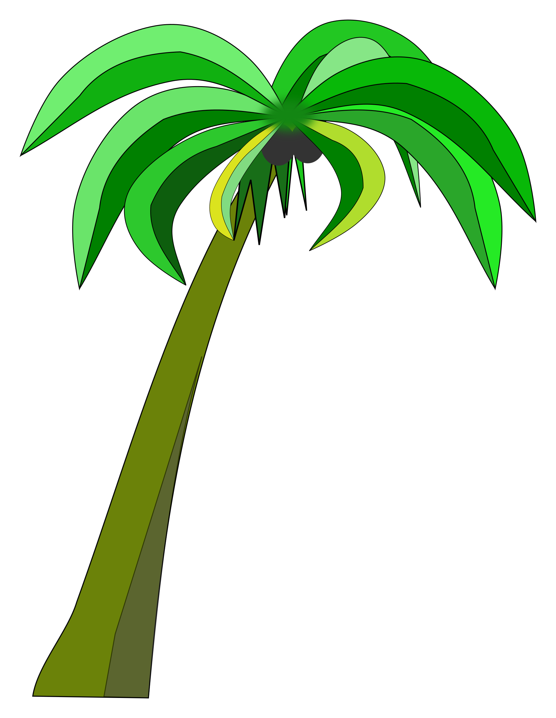 Palm tree with coconuts clipart banner library Clipart - Palm or Coconut Tree banner library