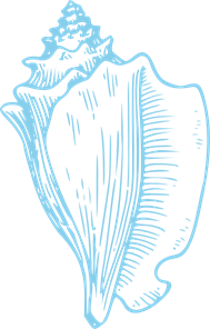 Clipart conch shell clipart Sky Blue Conch Shell PNG, SVG Clip art for Web - Download Clip Art ... clipart