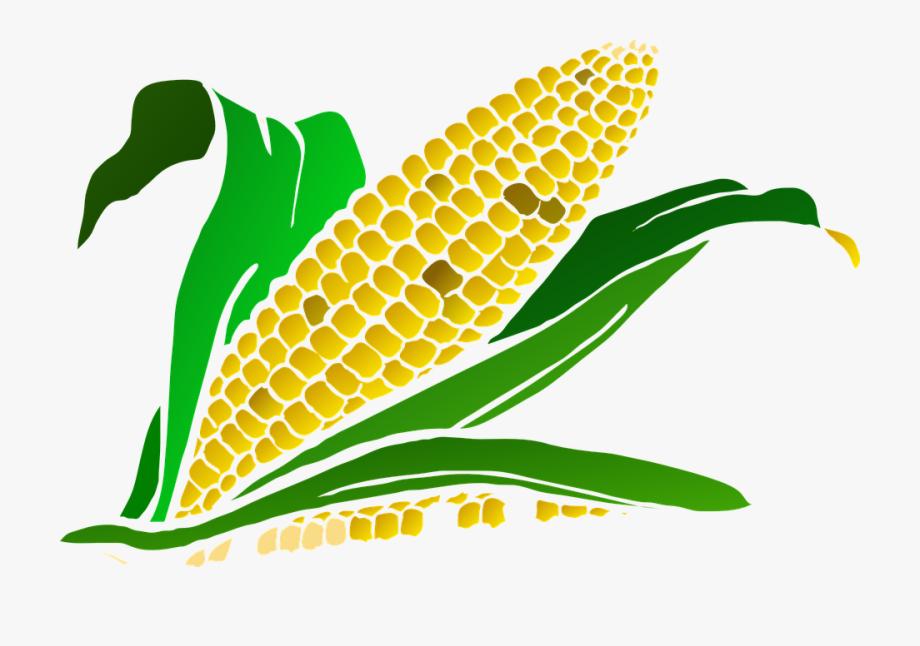Clipart corn maze clip freeuse stock Corn Cob Png - Corn Maze Clip Art #69679 - Free Cliparts on ClipartWiki clip freeuse stock
