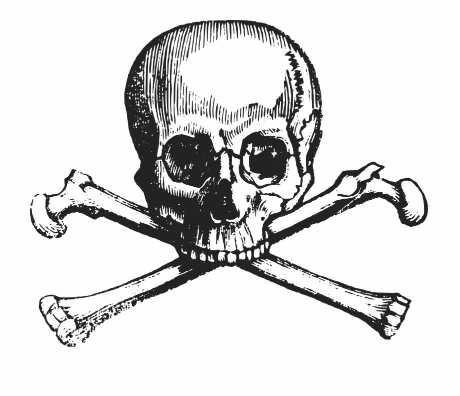 Clipart cross and skull bones png format transparent background transparent download Skull Png Background Image - Skull And Crossbones, Transparent Png ... transparent download