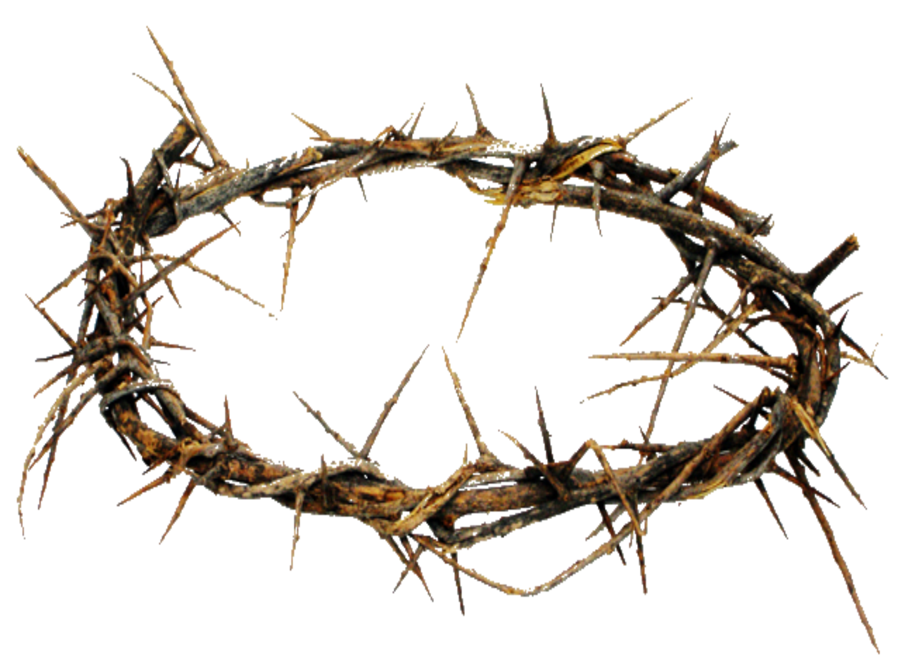 Cross with crown of thorns clipart clip art freeuse Crown Of Thorns PNG HD Transparent Crown Of Thorns HD.PNG Images ... clip art freeuse