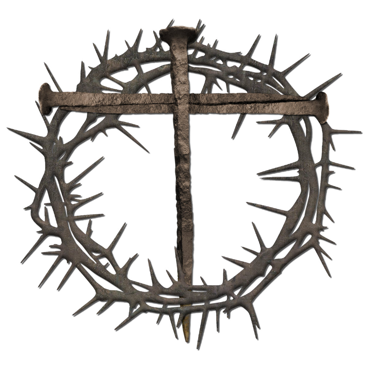 Crown of thorns clipart transparent picture library stock Free clipart crown of thorns - Clipart Collection | Easter lily and ... picture library stock