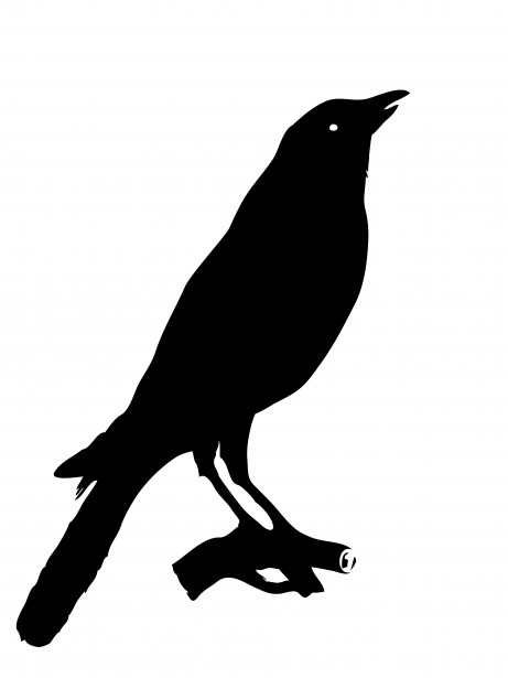 Clipart crows jpg black and white download Bird Crow Clipart Free Stock Photo - Public Domain Pictures jpg black and white download