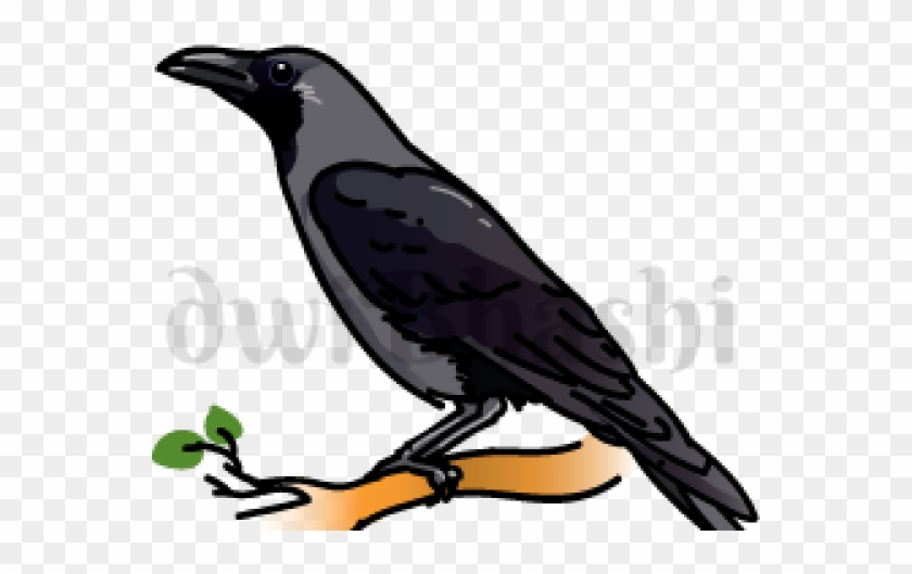Clipart crows freeuse download Banner Library Stock Crow Clipart Primitive - Indian Crow Clipart ... freeuse download