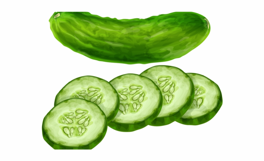 Clipart cucumbers graphic free Cucumber Clipart Transparent Background - Cucumbers Clipart Free PNG ... graphic free