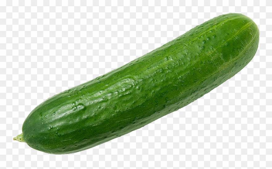 Clipart cucumbers graphic stock Cucumbers Png Clipart - Cucumber Png Transparent Png (#1736187 ... graphic stock