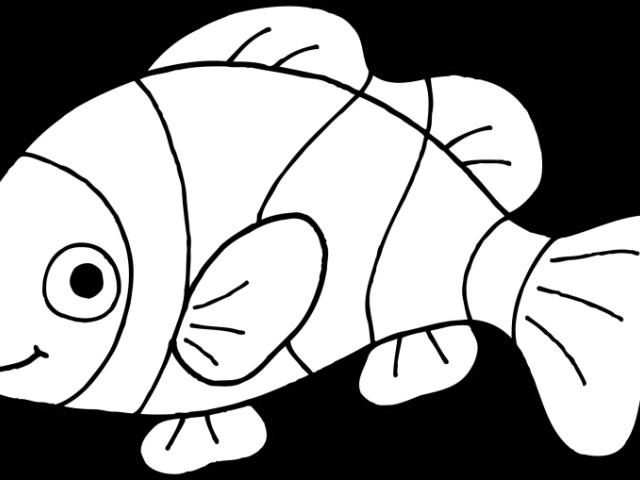 Clipart cute fish clip art library Cute Fish Clipart 17 - 570 X 462 | carwad.net clip art library