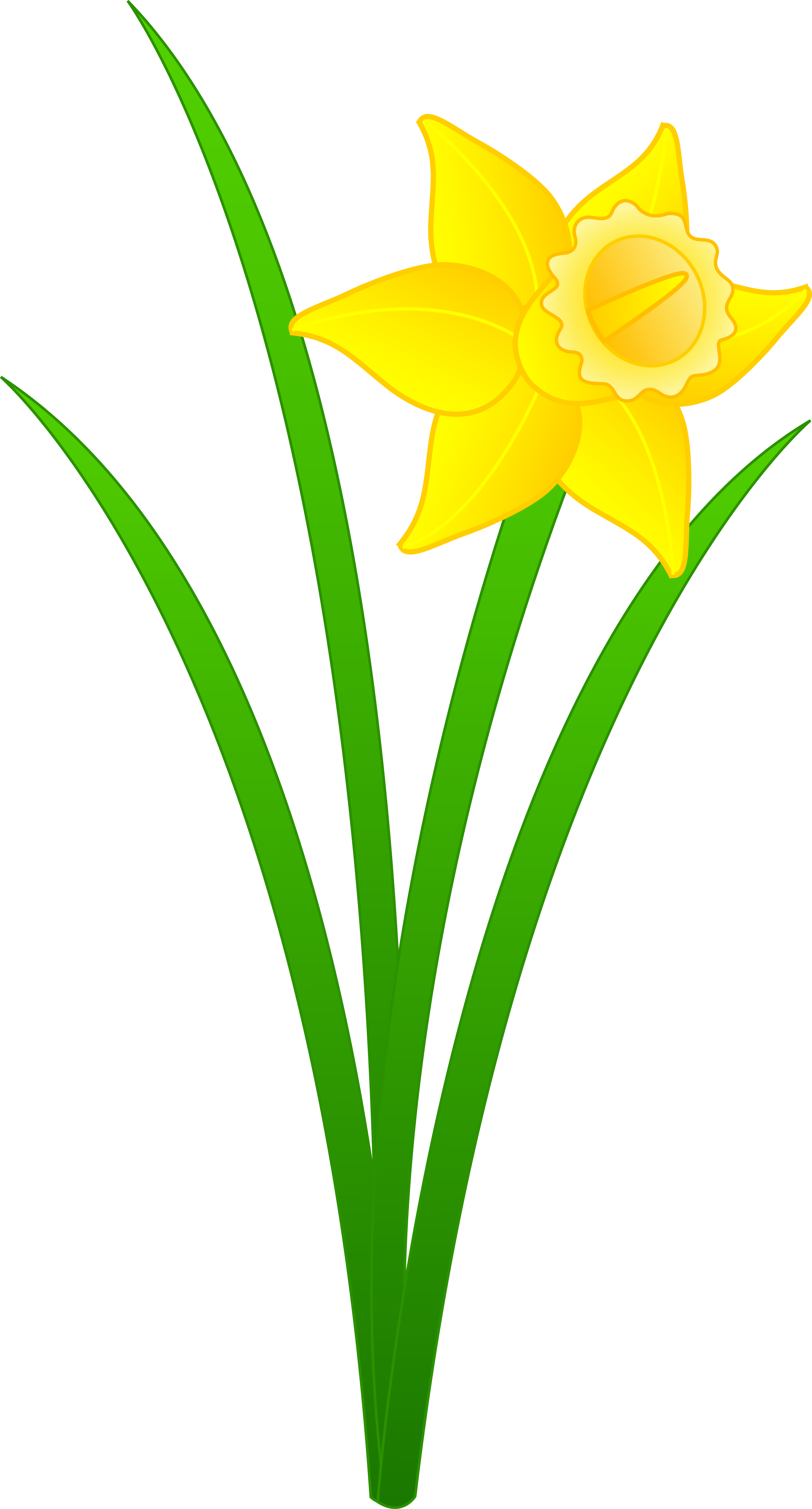 Clipart daffodils graphic freeuse stock Single Golden Daffodil - Free Clip Art graphic freeuse stock