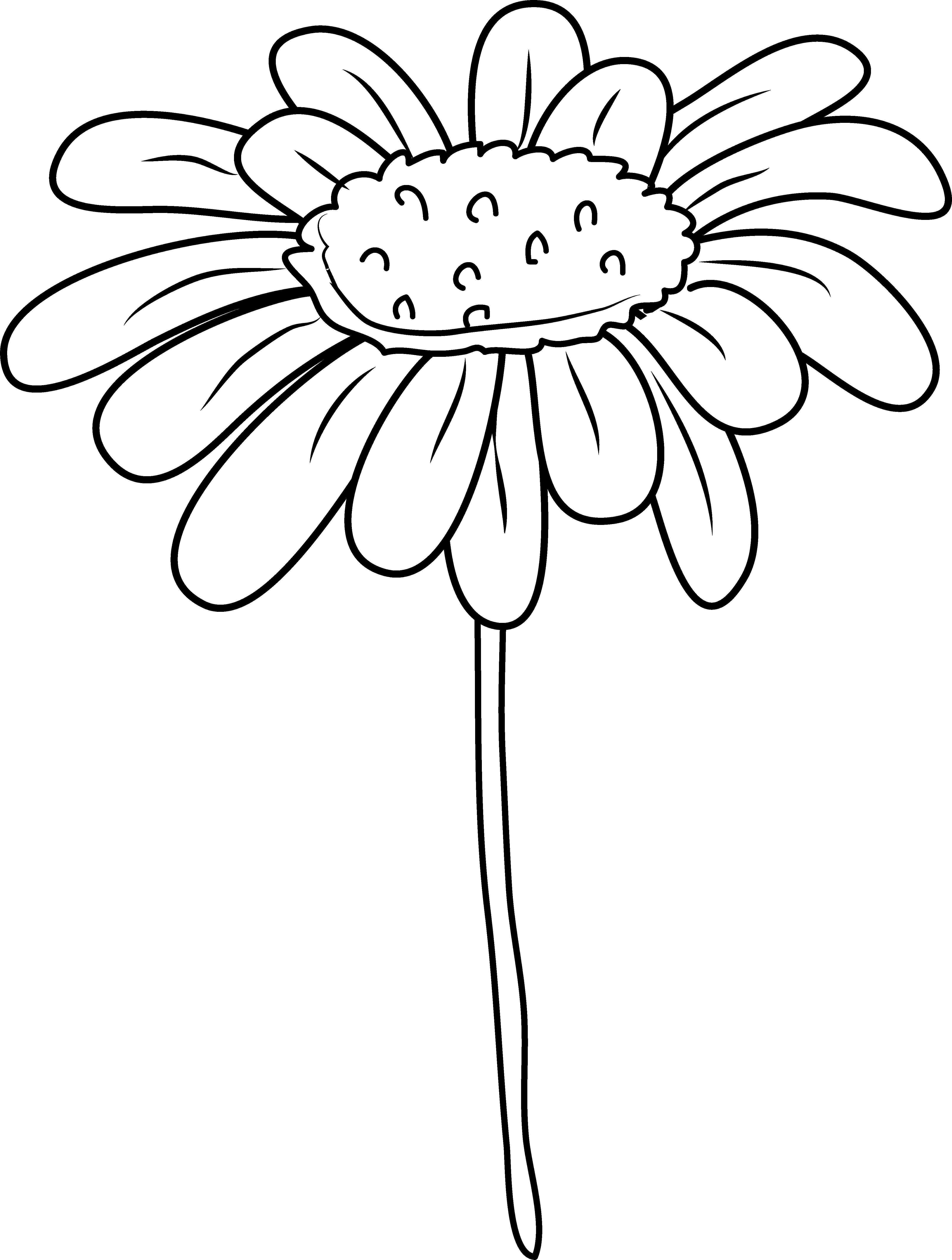 Free clipart daisy flower clip stock Daisy Flower Coloring Page - Free Clip Art clip stock
