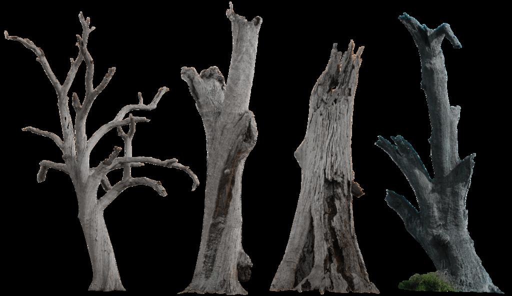 Clipart dead tree clip art Dead Tree Pack 002 - HB593200 by hb593200 on DeviantArt clip art