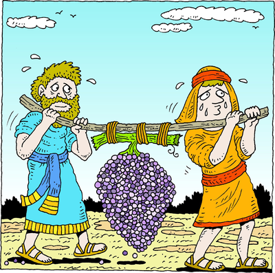 Two men carrying grapes clipart banner royalty free Image: Spies Carrying Grapes   Deuteronomy Clip Art   Christart.com banner royalty free