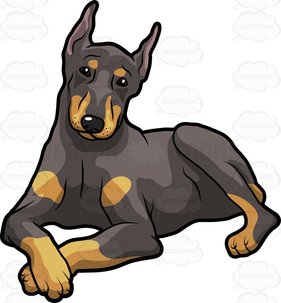 Clipart doberman svg An Big Black Dog With Tan Accent Resting And Looking At The Camera ... svg