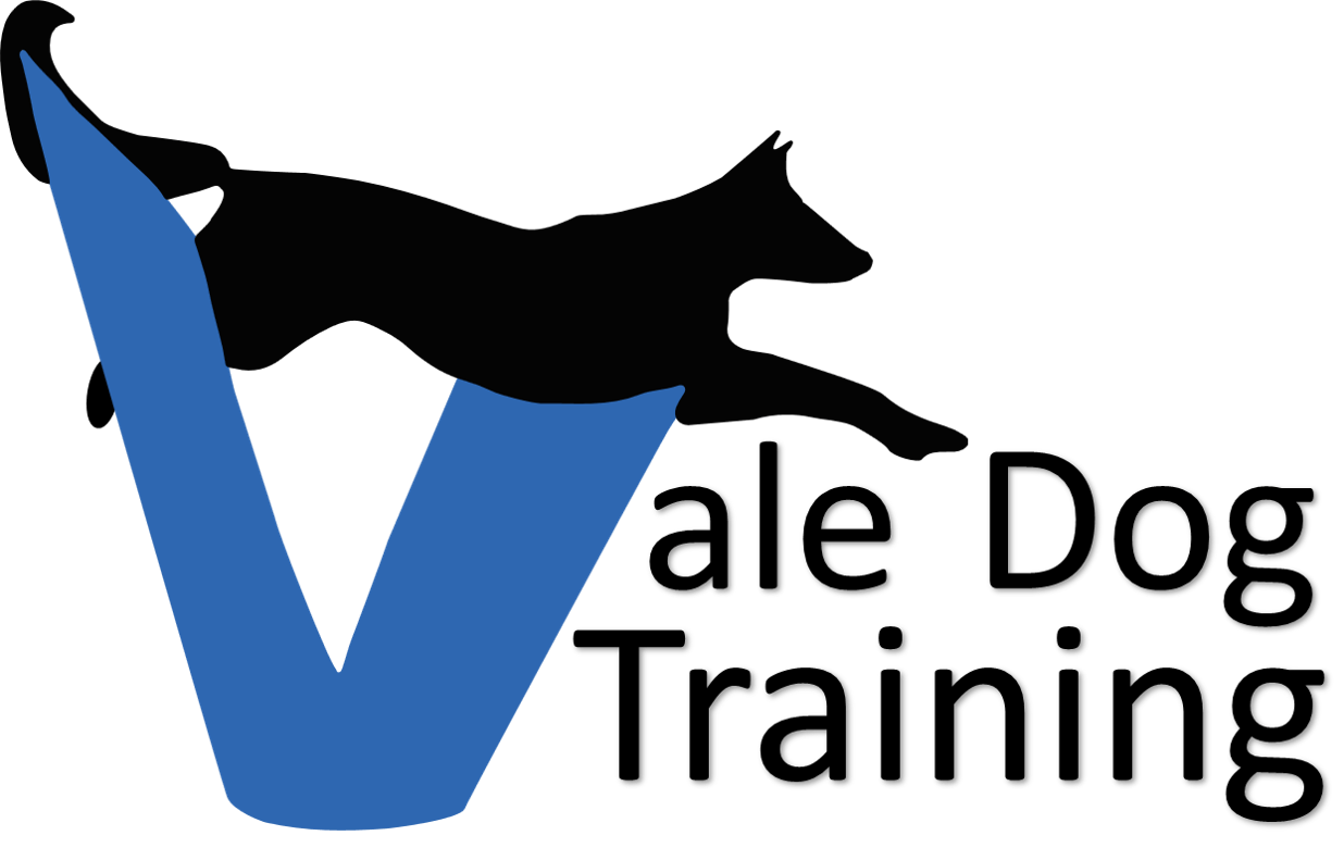 Dog agility clipart vector transparent download Dog Training | Day Care | Agility | Puppy Classes from Vale Dog Training vector transparent download