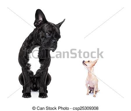 Clipart dog bigand small