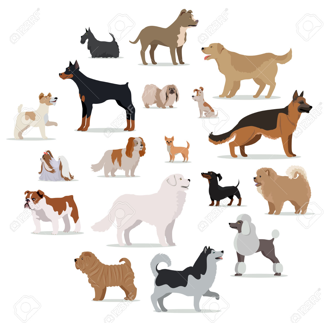 Clipart dog bigand small clipart free download Dogs Breed Set Isolated On White. Collection Of Big And Small ... clipart free download