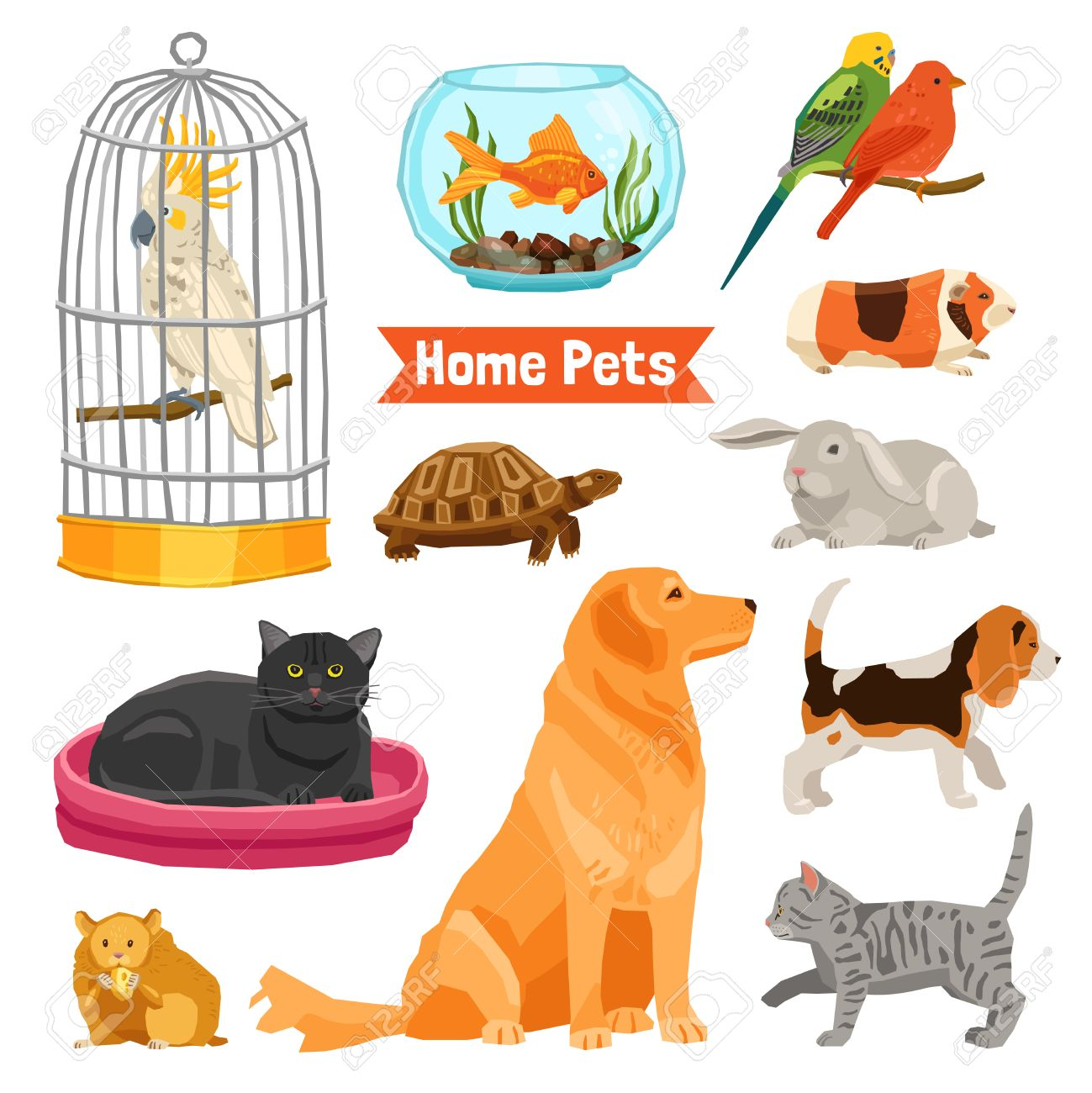 Clipart dog bigand small png freeuse stock Big And Small Home Pets Set With Dogs Cats Birds Fish Turtle ... png freeuse stock