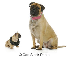 Clipart dog bigand small clip art free library Stock Photography of Big & small friends - A rhino looking at an ... clip art free library