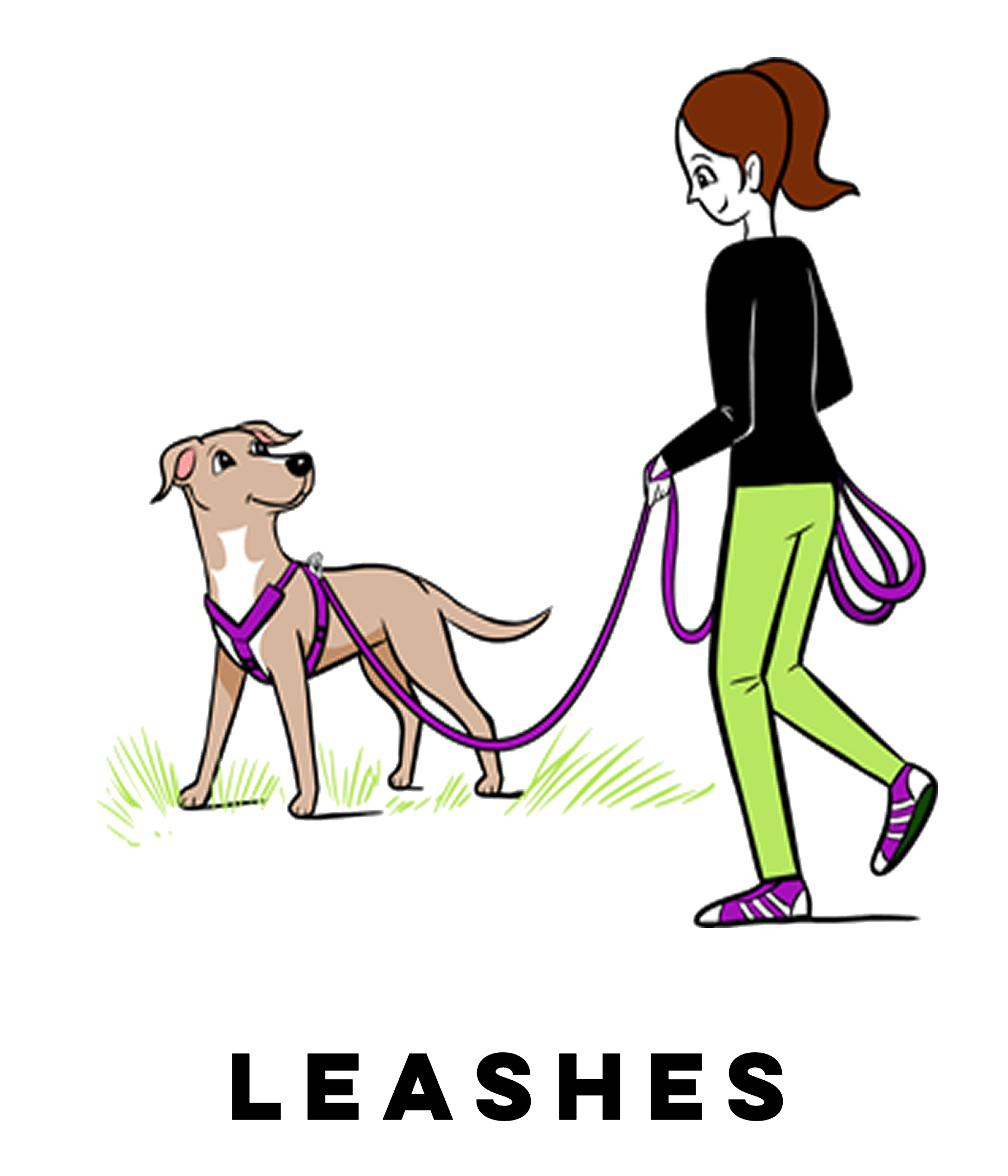 Dog on leash clipart clip download Campus Store | Grisha Stewart clip download