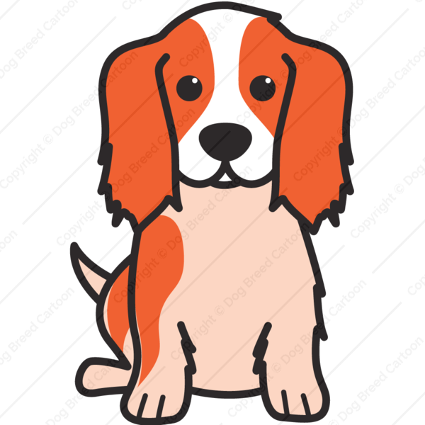 Cavalier King Charles Spaniel | Color Edition | Dog Breed Cartoon ... clip art
