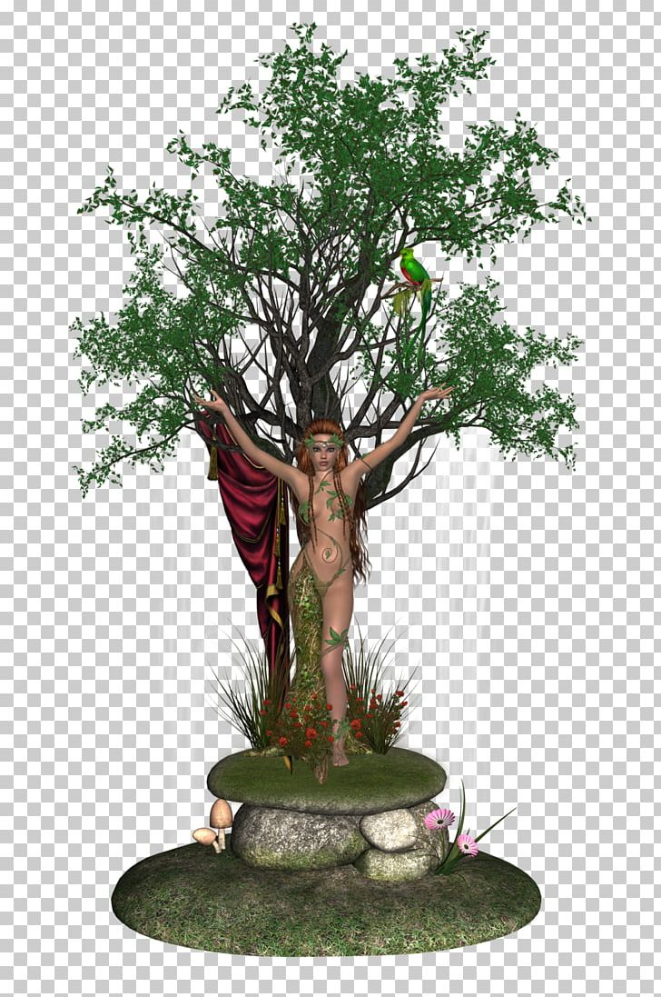 Clipart dryad clip freeuse download Bonsai Tree Woody Plant Liancheng County Dryad PNG, Clipart, Bonsai ... clip freeuse download