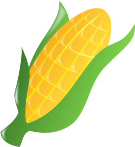 Clipart ear of corn clip art royalty free download 67+ Corn Clipart | ClipartLook clip art royalty free download