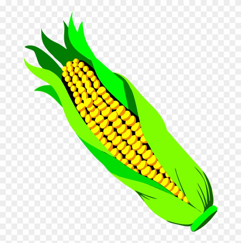 Clipart ear of corn black and white library Ear Of Corn Clipart - Ear Of Corn Png, Transparent Png - 674x768 ... black and white library
