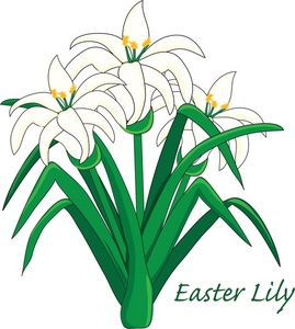 Free easter lily clipart banner transparent library Free Easter Lily Cliparts, Download Free Clip Art, Free Clip Art on ... banner transparent library