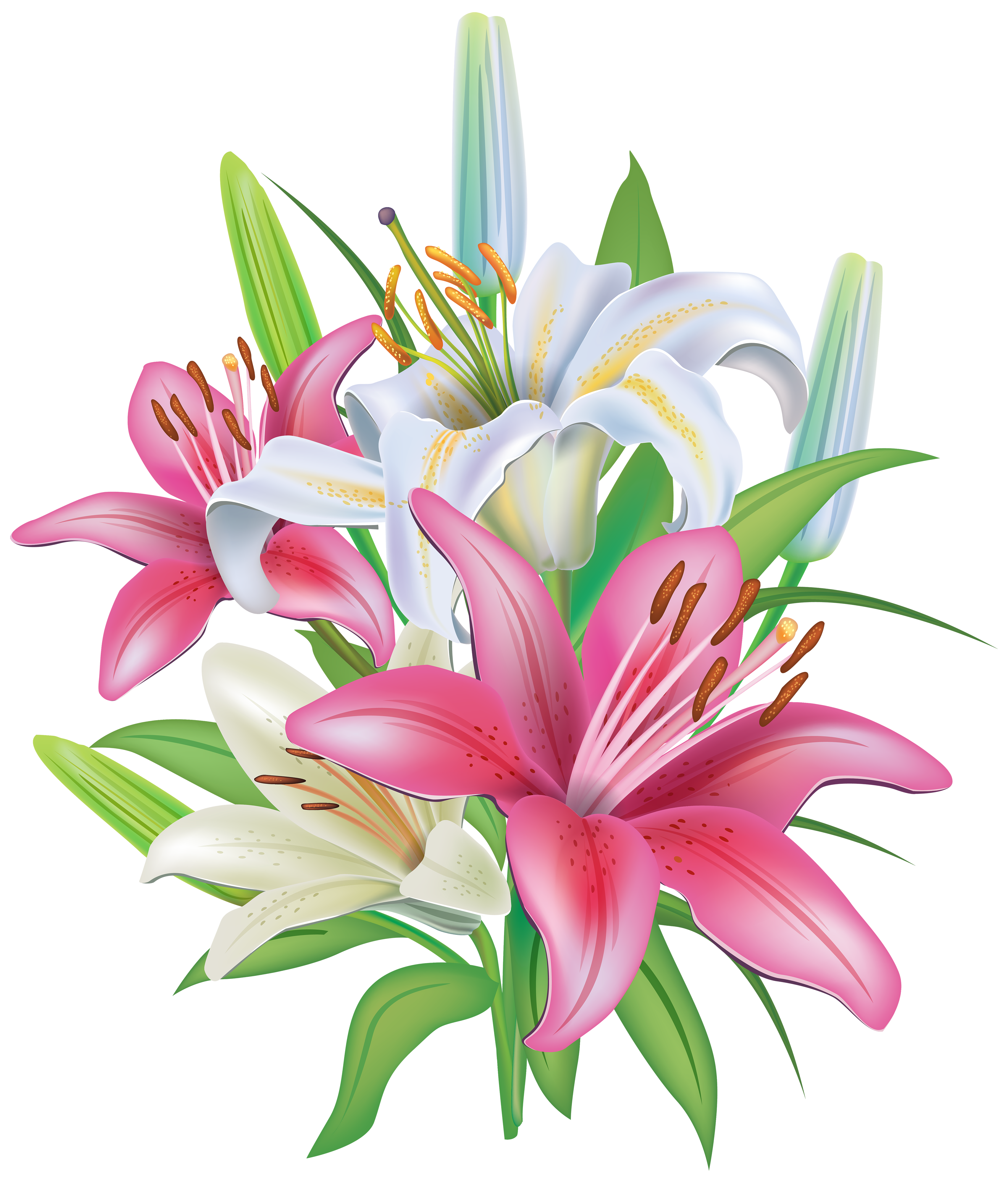 Lily flower clipart png black and white download Lilies Flowers Decoration PNG Clipart Image | Gallery Yopriceville ... png black and white download