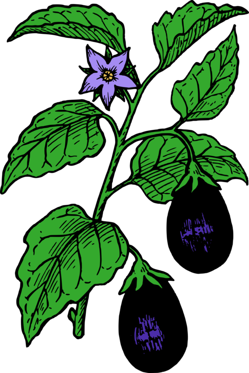 Clipart & eggplant parmigiana clip stock Plant,Flora,Leaf Vector Clipart - Free to modify, share, and use ... clip stock