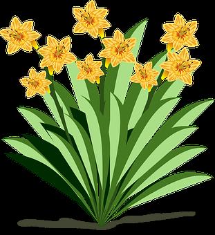 Kostenlose bilder auf pixabay. Clipart essen und trinken kostenlos