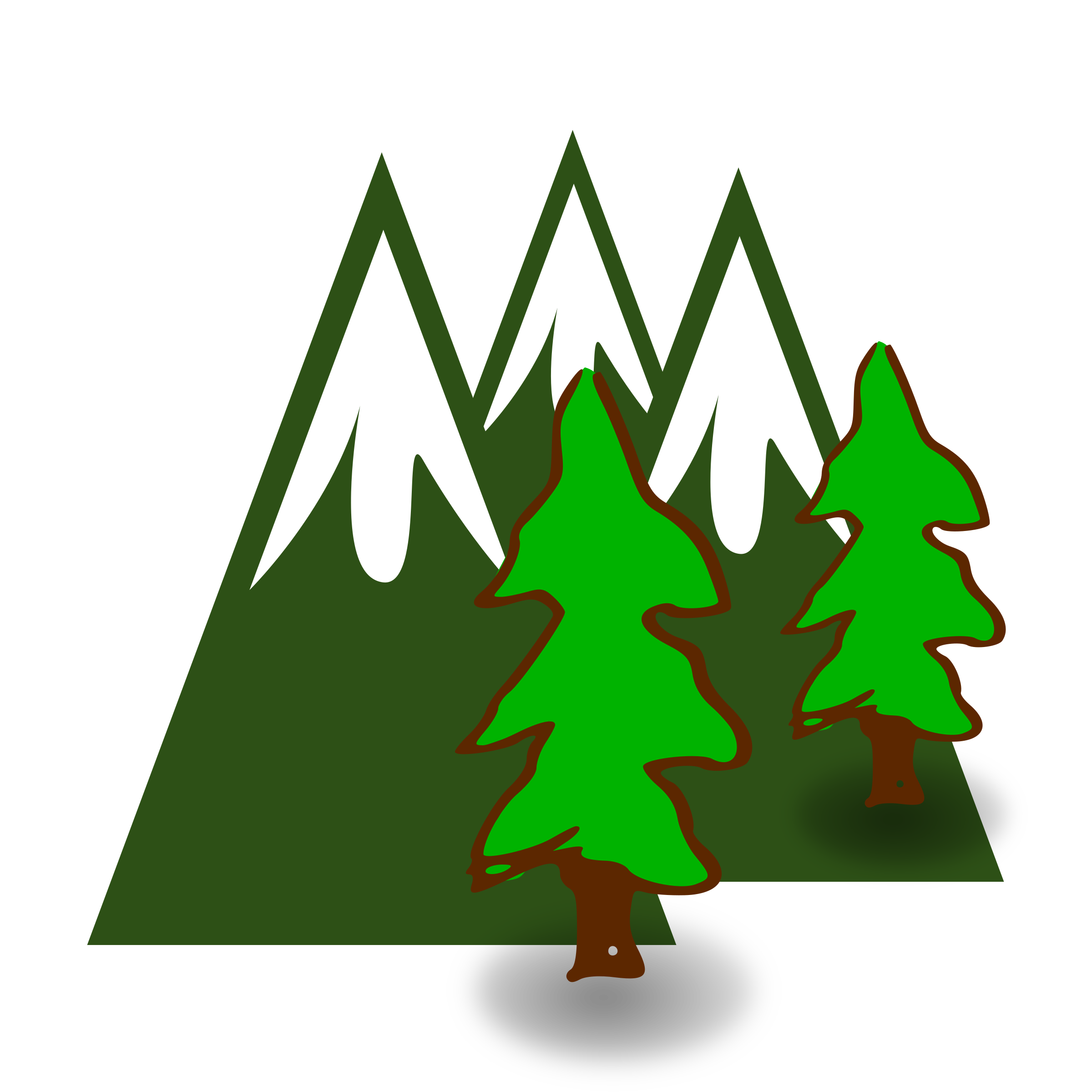 Library Of Evergreen Tree Jpg Freeuse Download Png Files